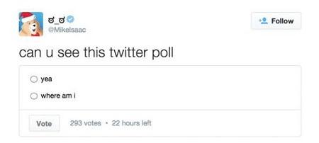 Twitter正开始测试在线投票调查功能
